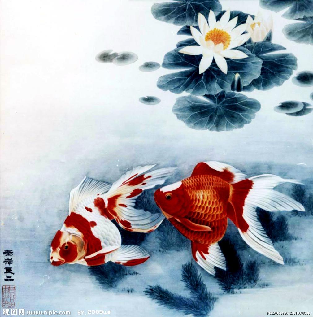 国画画金鱼的步骤